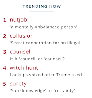 Top dictionary look-ups may reveal the themes occupying thinking minds.